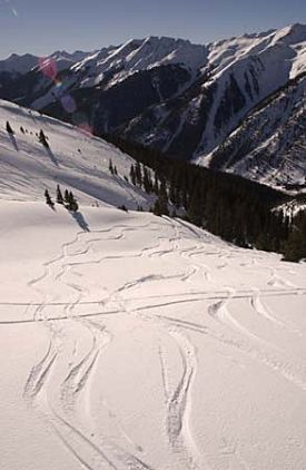 Silverton Mountain photo