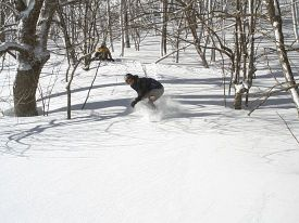 Appalachian Ski Mountain photo